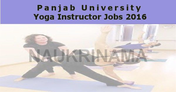 Panjab University Yoga Instructor Jobs 2016, puchd.ac.in
