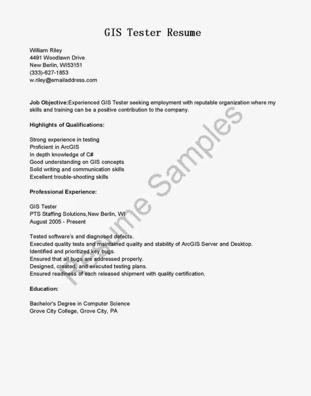 Resume : Marketing Director Resume Graphic Designer Career ...