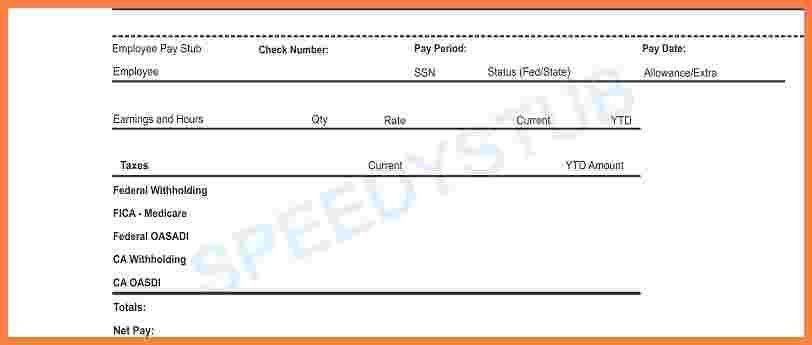 fake pay stub template
