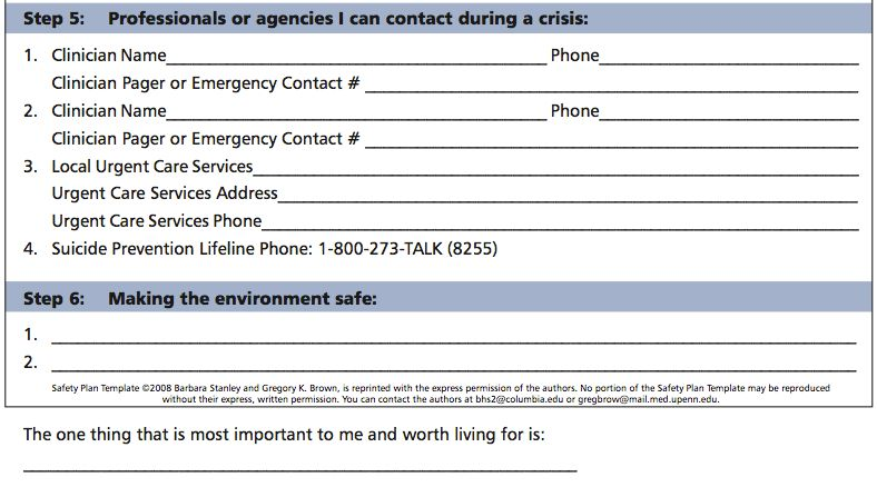 Safety Plan Template | cyberuse
