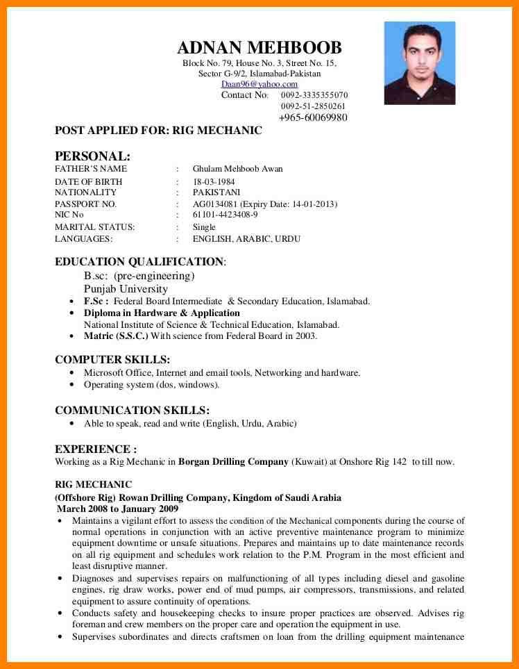 6+ Normal Cv Format | Portfolio Covers  Resume File Format