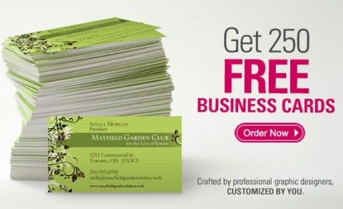 250 business cards vistaprint business cards heres why 500 for 10 ...