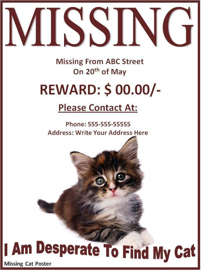 Missing Cat Poster - Word Excel PDF