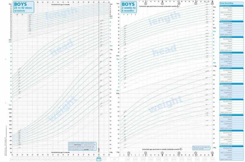 A4 UK-WHO NICM [Neo-Natal Infant Close Monitoring] Growth Charts ...