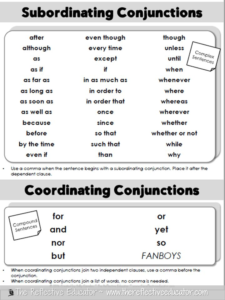 Writing Sentences with Conjunctions