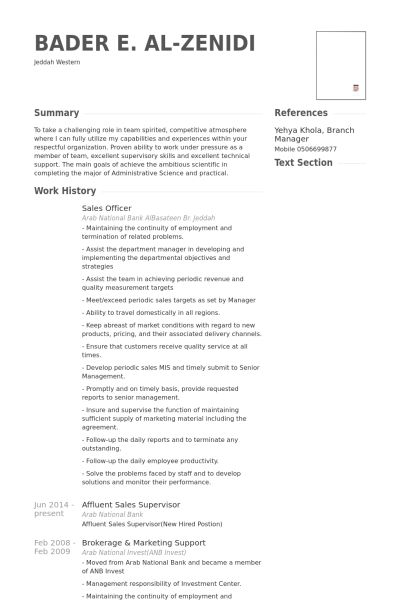 Sales Officer Resume samples - VisualCV resume samples database