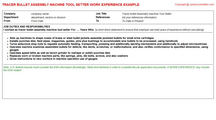 Machine Tool Electrician CV Work Experience Samples