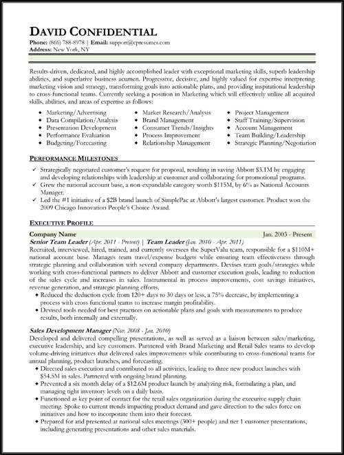 Download Hybrid Resume Template | haadyaooverbayresort.com