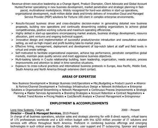 Executive Director Resume Samples Executive Director Resume .