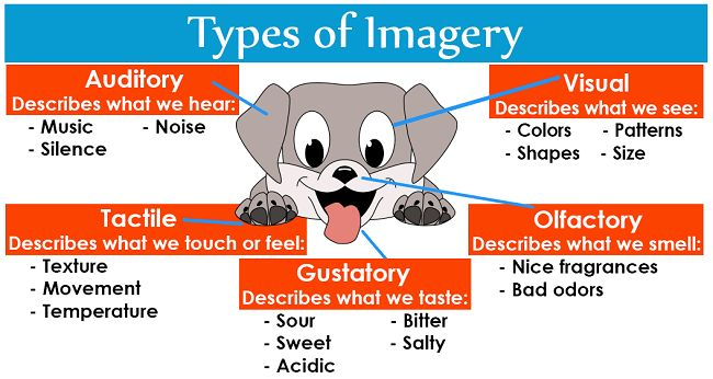Imagery: Definition and Examples | LiteraryTerms.net