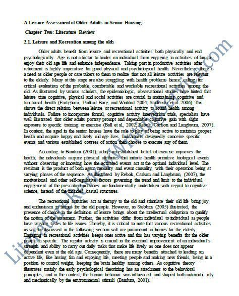 Professionally Written Literature Review Essay