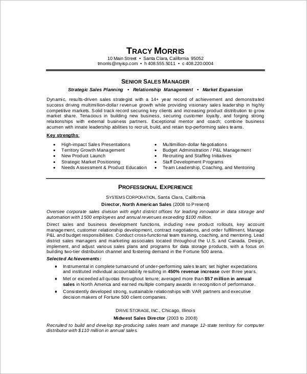 Sample Sales Manager Resume - 9+ Examples in Word, PDF