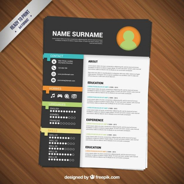 Minimalist resume template Vector | Free Download