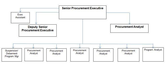 Procurement Executive