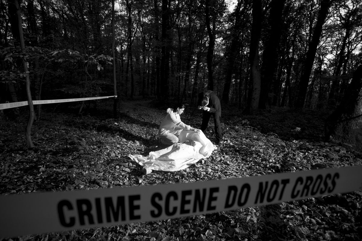 Forensic Photographer - Photo Imaging - Hiive
