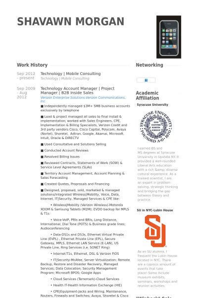 sample technology consultant resume top 8 information technology
