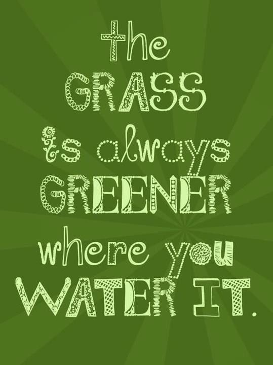 Best 12 Lawn Care Sayings images on Pinterest | Gardening