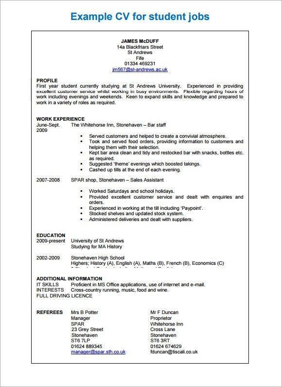 Sample Professional CV - 8+ Download Free Documents in PDF, Word