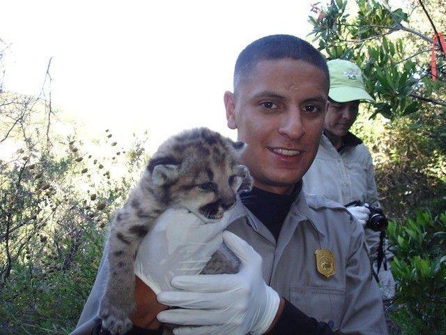 41 best Wildlife Biologist images on Pinterest | Biologist ...