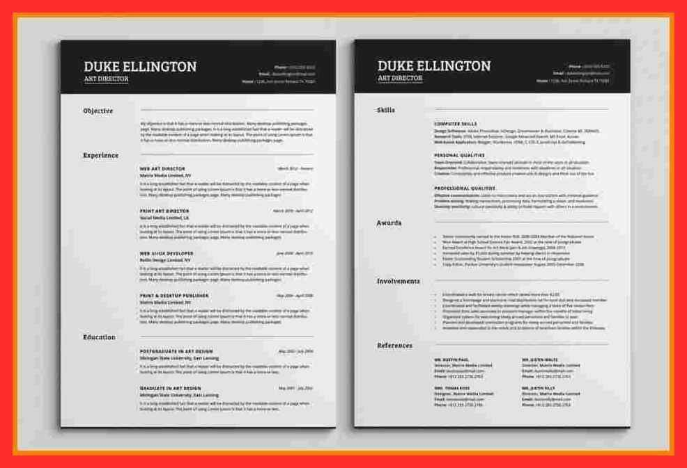 2 page resume sample | good resume format