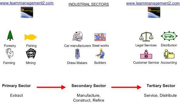 Primary , Secondary and Tertiary Sectors