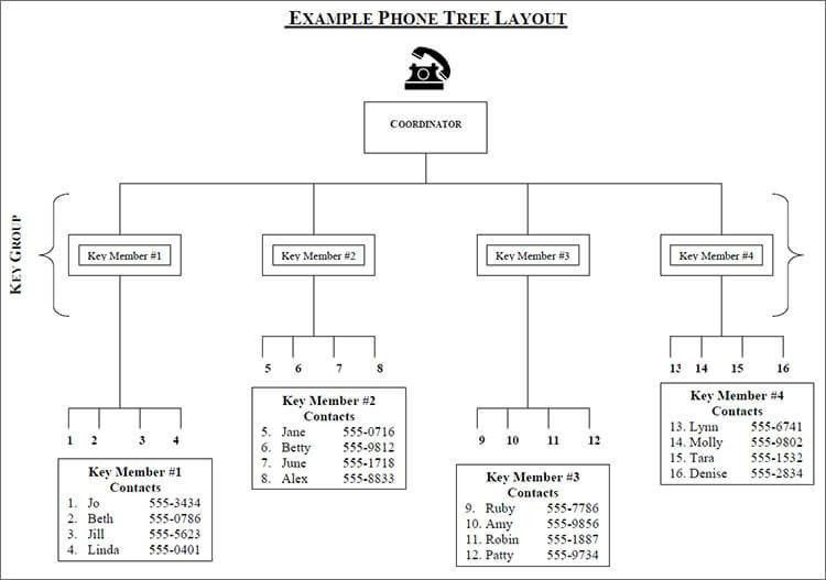Phone Tree Template Word Excel || Free & Premium Templates ...