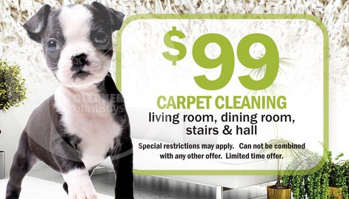 Carpet Cleaning Business Cards #C0003 (FRONT VIEW)