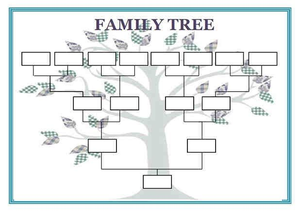 5+ family genograms template | a cover letters