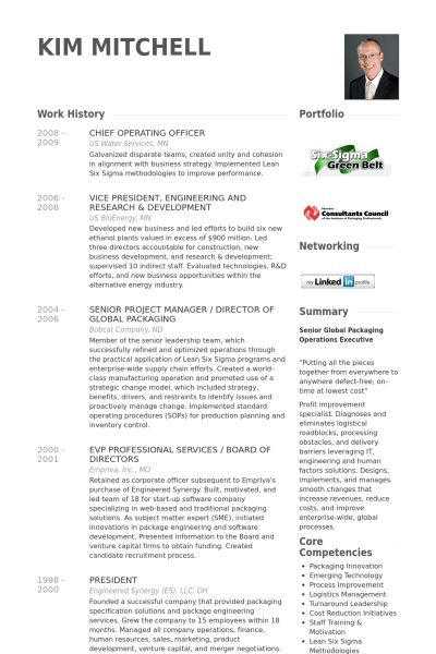chief operations officer resume chief operations director coo
