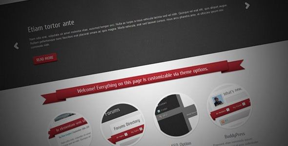 Free and Premium Portfolio HTML Website Templates - Designmodo