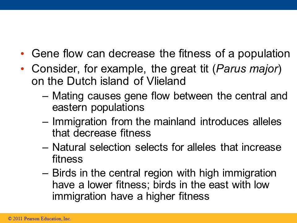 The Evolution of Populations - ppt download
