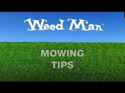 Lawn mowing services in Aurora, Parker, Castle Rock, Highlands ...