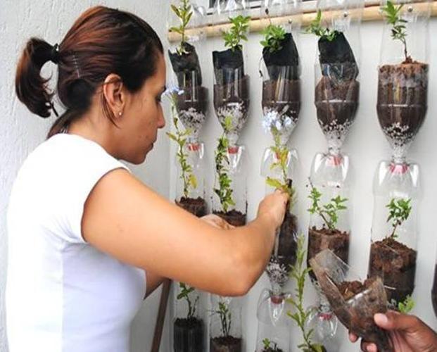 fazer jardim vertical garrafa pet:Horta De Garrafas Pet