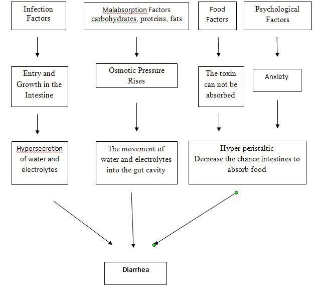 pathophysiology of diarrhea | Nursing Assessment Nursing Care Plan ...