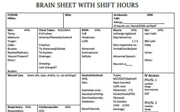 The 10 Best Nurse Brain Sheets | Scrubs - The Leading Lifestyle ...