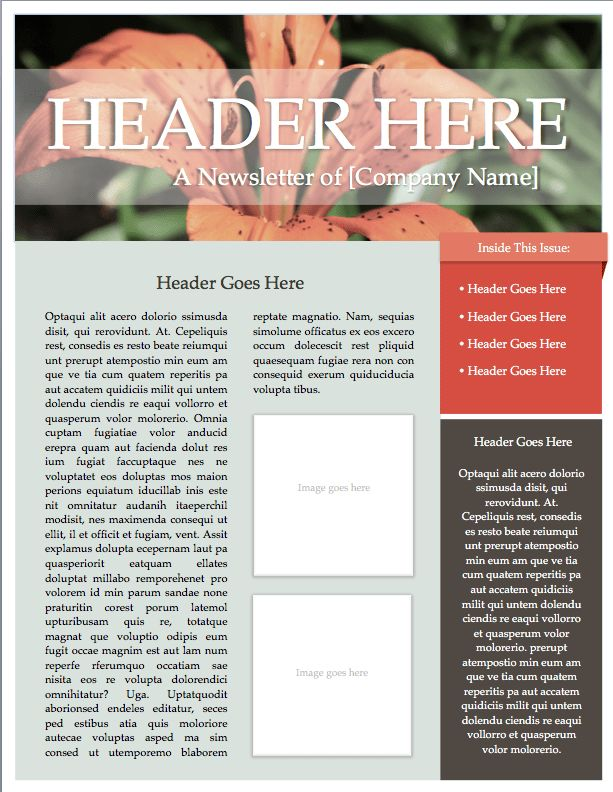 Gardening Newsletter Template (Microsoft Word File) – DIY Design ...