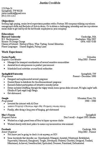 Objective Section Of Resume - CV Resume Ideas