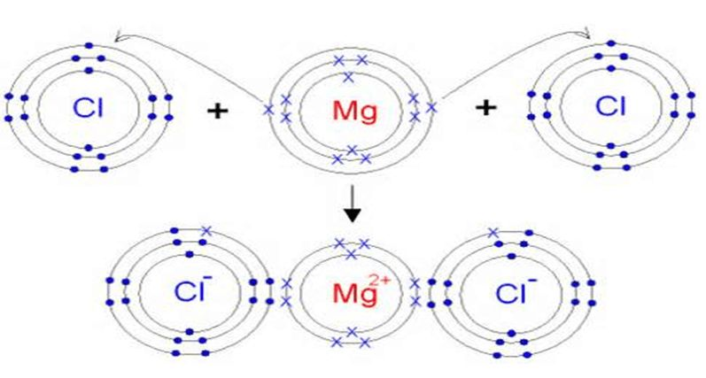 Formation of Ionic Compounds | Bonding