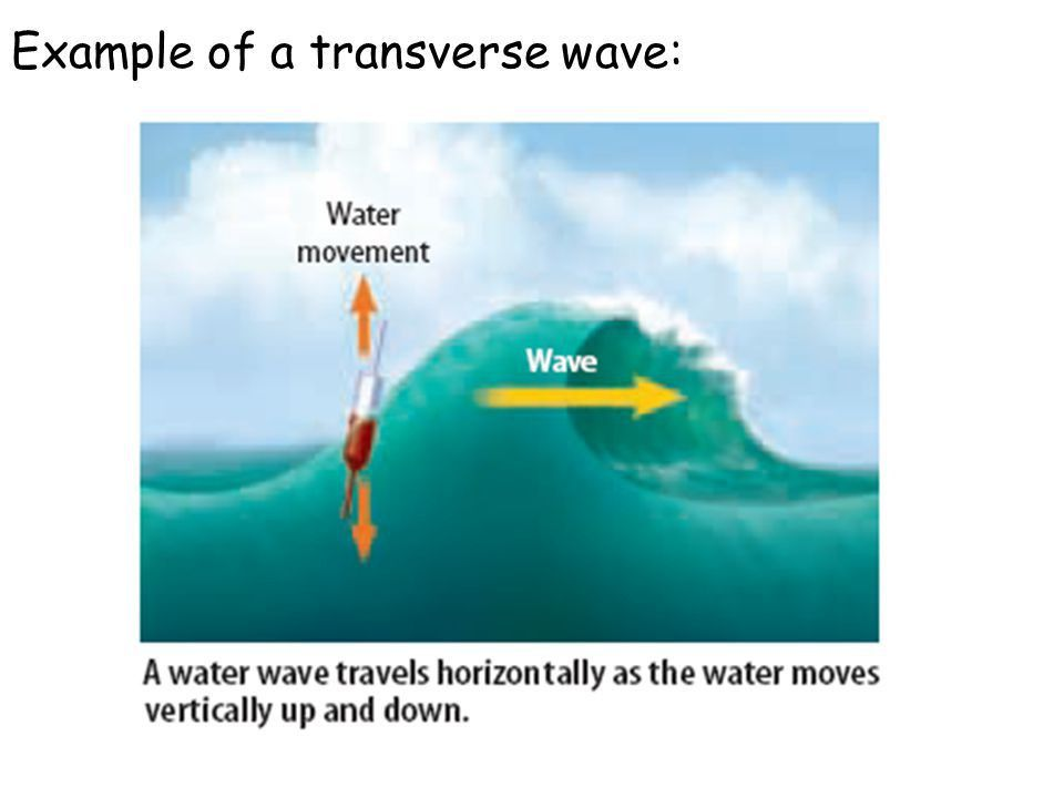 Waves Chapter 8 Waves. - ppt video online download