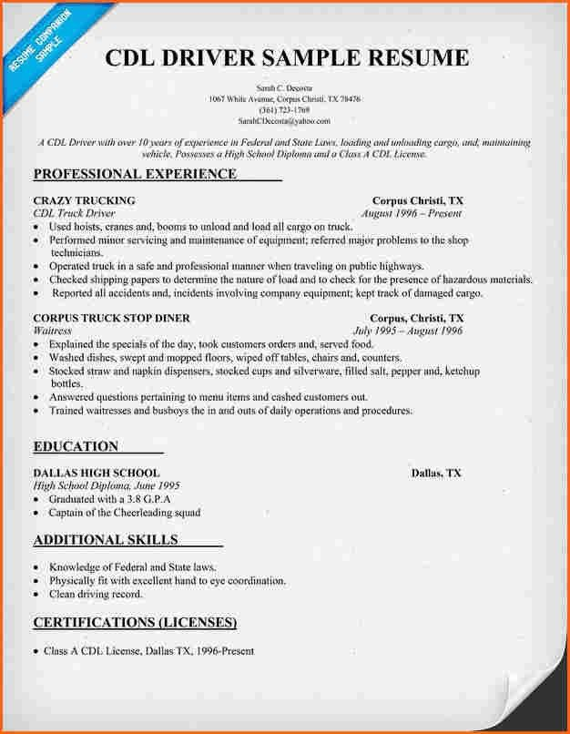 6+ truck driver resume sample - Budget Template Letter