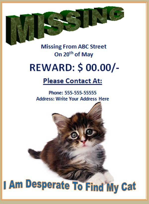 Free Missing Cat Flyer - Poster Template - Free Online Flyers