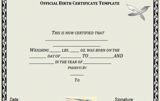 Official Birth Certificate Template - TEMPLATFORM.COM