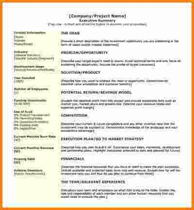 11+ project summary template | cashier resume