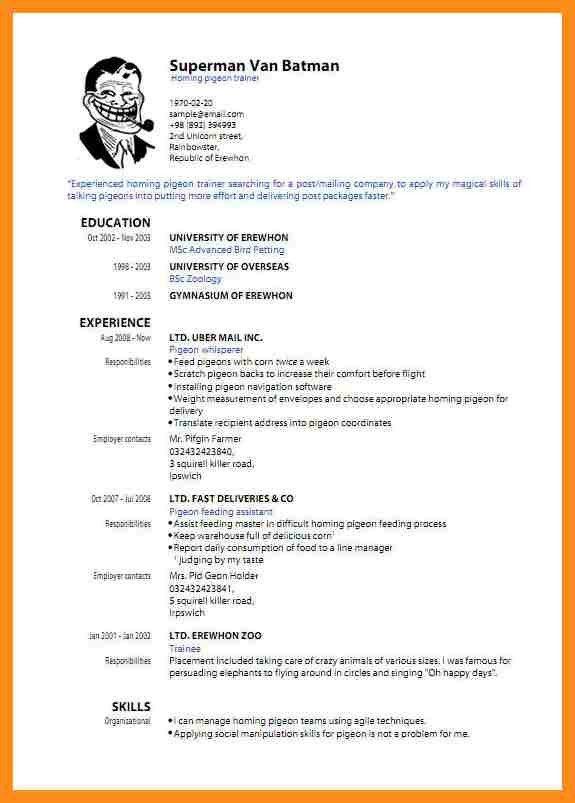 8+ standard cv format pdf | resume setups