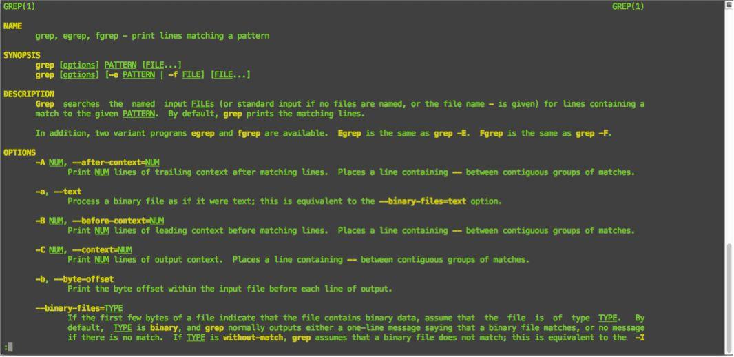 Bash Scripting: man and - -help > Amsys