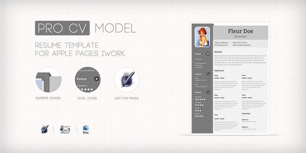 procv.biz resume design template – zigmoon.com
