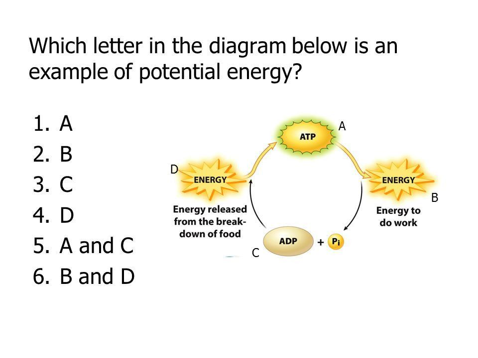 Chapter 4: Energy Clicker Questions - ppt download