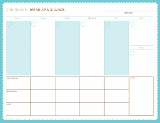 13 Best Images of Printable Schedule Sheets - printable daily ...