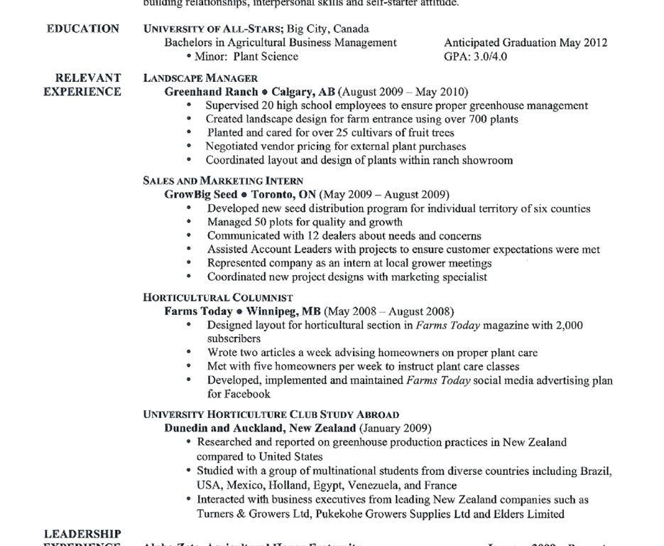 Impressive Idea Examples Of Great Resumes 13 Resume Canada Sample ...