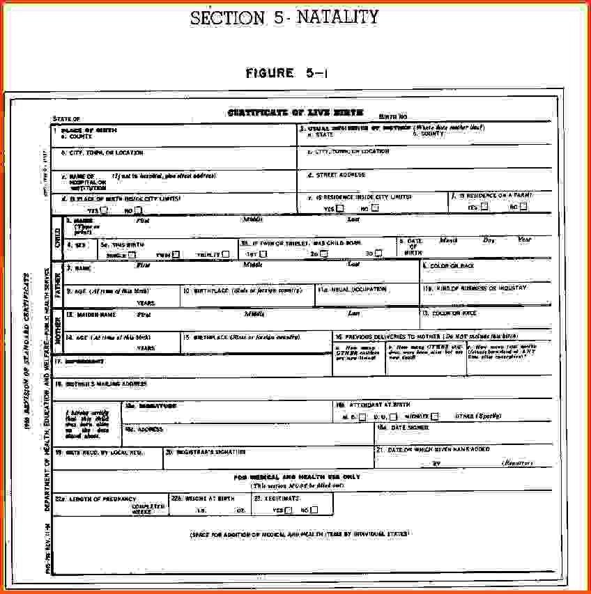 Blank Birth Certificate.birth+certificate+blank.png - Sponsorship ...